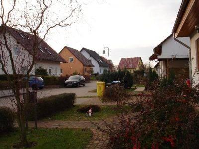 Bausachverständiger Dortmund dortmund sporenbelastung messen schimmeltest schimmelanalyse
